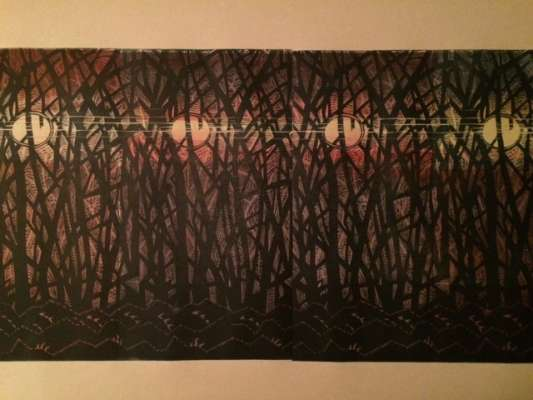 The Following Moon, ink, 12 x 24 approx., $$300.0000